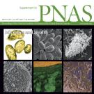 Supplement to PNAS cover